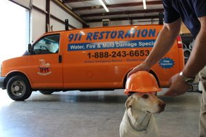 911 Restoration Pup On The Job